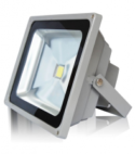 Torch LED Flood Lights 50watt